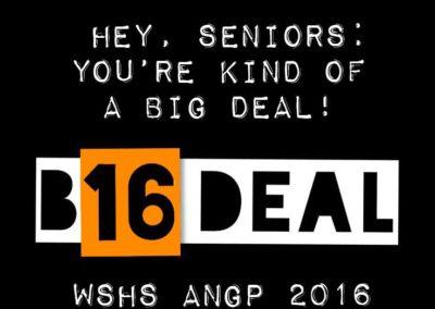 wshs-2016-angp_27204082413_o