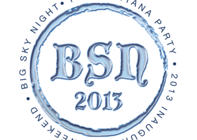 _0002_BSN2013_logo_ice_detail